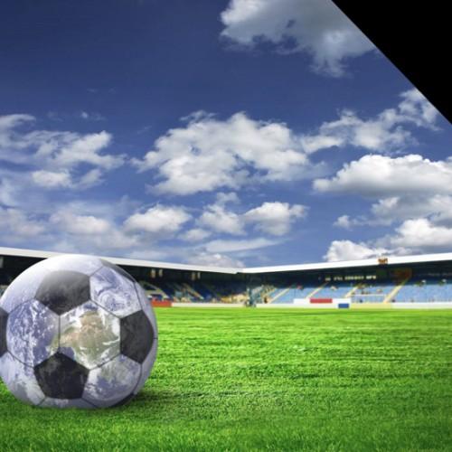 Studie: Die Bedeutung von Nachhaltigkeit im Sportbusiness